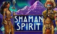 Shaman Spirit slot game