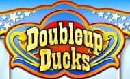 Doubleup Ducks slot game